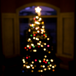 Christmas Tree with coloured lights